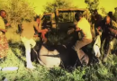Incredible Rescue of Elephants From Hunting Snare & Spear Wound (VIDEO)